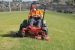lawns-